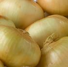 Sweet Onion