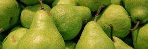 Grant J Hunt Pears
